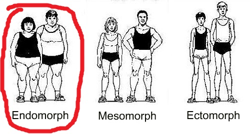 Adult-Fitness-endomorph-mesomorph-ectomorph-body-types